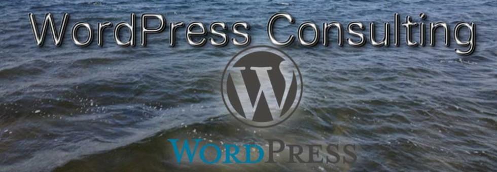 WordPressConsulting3new2